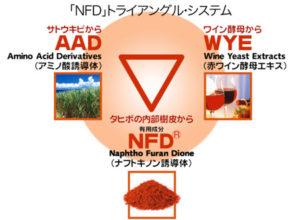 「NFD」トライアングルシステム