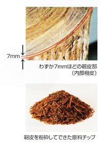 タヒボの靭皮と原料チップ